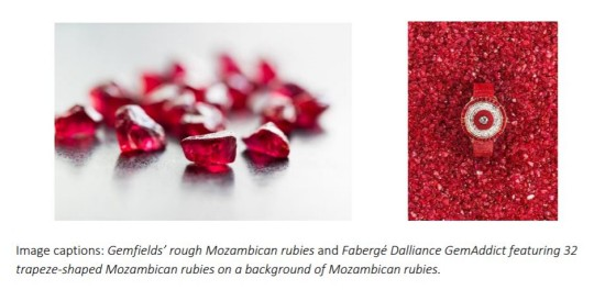 Rubies enjoy rising popularity among jewellery designers, collectors and investors