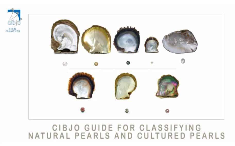 CIBJO pearl