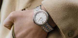 how to clean wristwatch